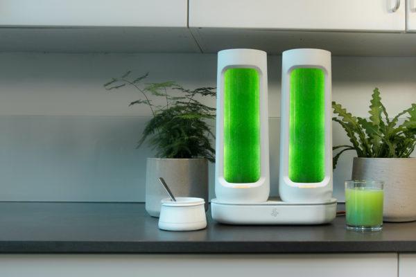 """Bloom : Hệ thống cho phép người dùng tự trồng """"siêu thực phẩm"""" tảo xanh Spirulina"""